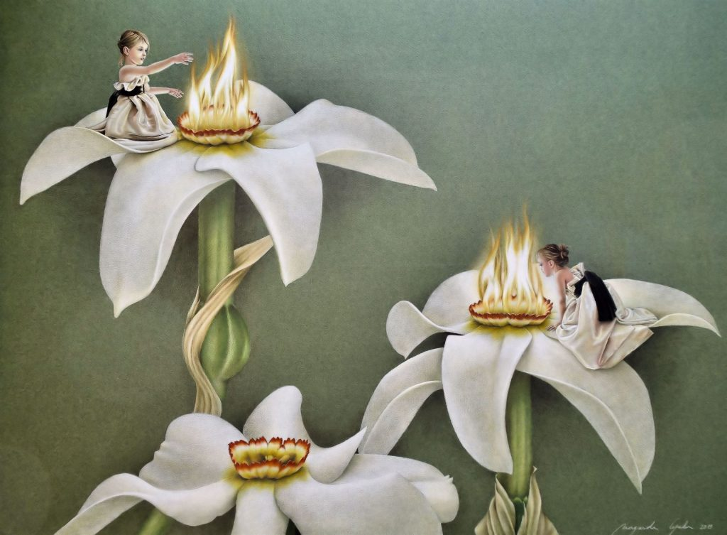 FOGOS DE S. JOÃO Este narciso, grandalla, é a flor nacional do principado de Andorra. Ela floresce em Junho, altura em que se festeja o S. João ou, a festa do fogo e da luz. Ora, por coincidência, o núcleo central desta flor, o seu cálice, lembra uma pequena fogueira. Fiz, por isso, a associação entre a flor do principado e a festa do seu Santo Patrono ou, a festa do fogo.